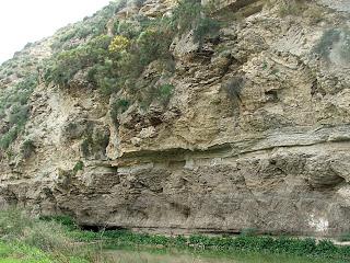 Skała gipsowa, ByVerisimilus (Own work) [CC BY3.0], via Wikimedia Commons