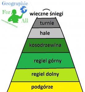Piętra roślinności w górach schemat