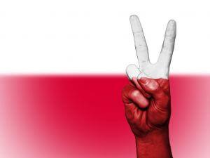 https://pixabay.com/pl/polska-pok%C3%B3j-r%C4%99ka-nation-tle-2132718/