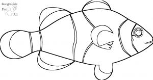 błazenek australia kolorowanki dodruku