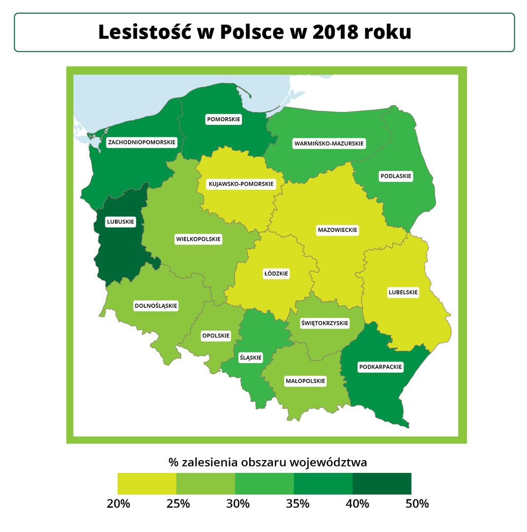 Lesistość wPolsce w2016 roku, Źródło Eduexpert Sp. zo.o., CC BY-SA 3.0