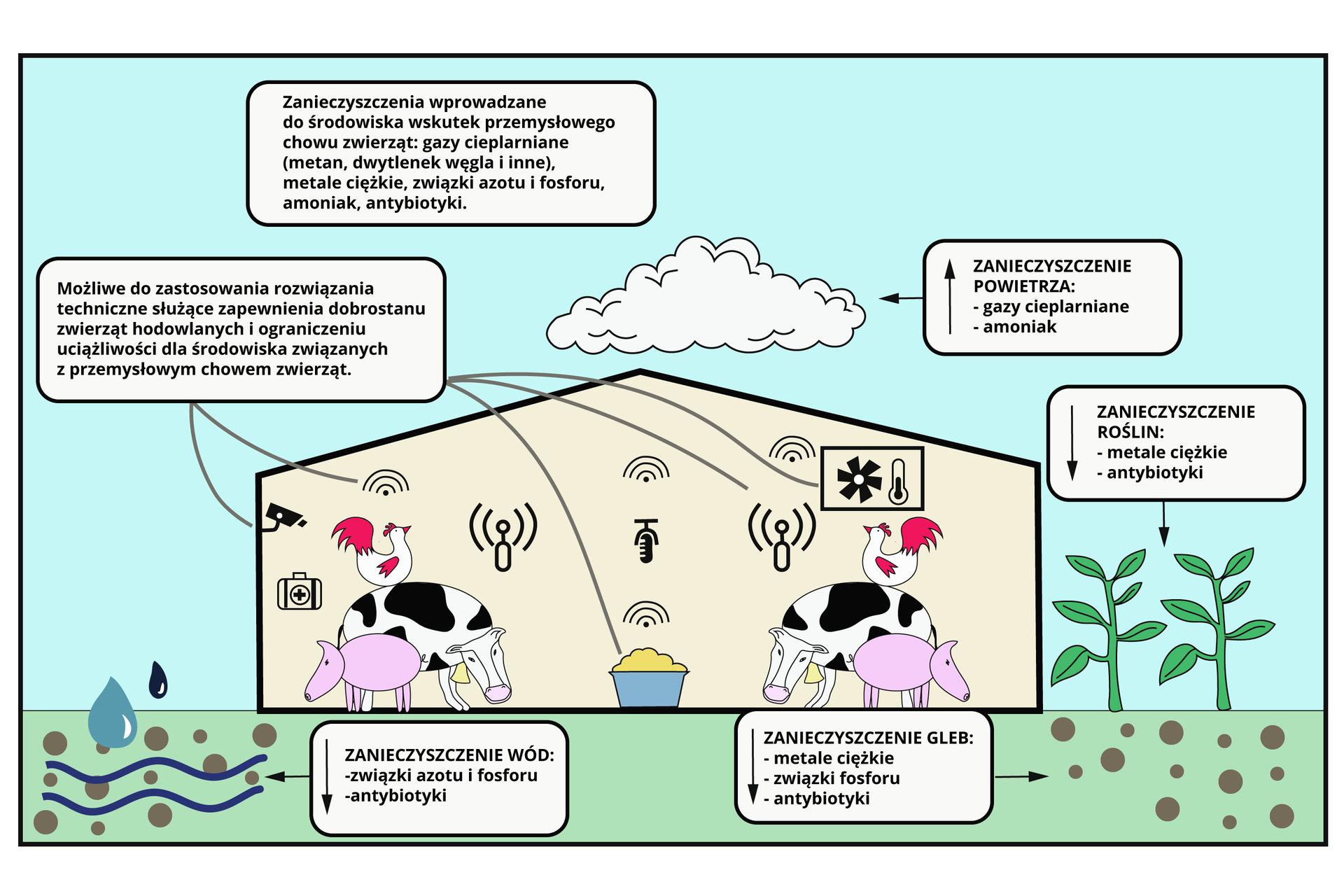Relacje-miedzy-elementami-srodowiska-w-gospodarstwie-ekologicznymZrodlo-Englishsquare.pl-Sp.-z-o.o-CC-BY-SA-3.0.