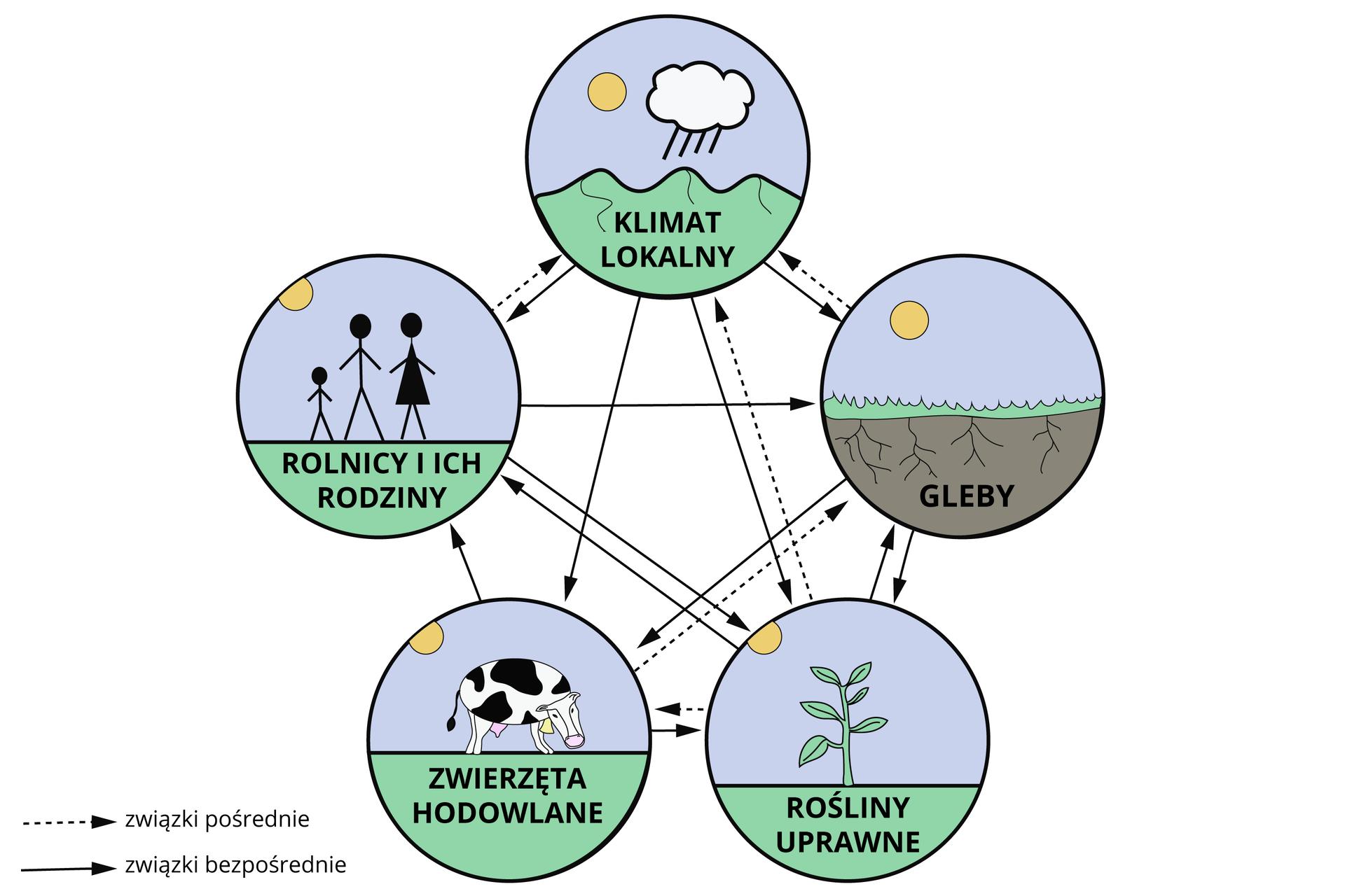 Relacje pomiędzy elementami środowiska orazrolnictwem uprzemysłowionym,ŹródłoEnglishsquare.pl Sp. zo.o., CC BY-SA 3.0