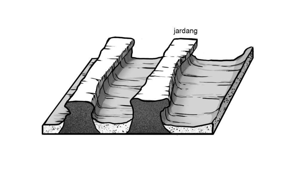 Twarde skały są podcięte, awąskie grzbiety wznoszą się tworząc jardangi, Źródło Englishsquare.pl Sp. zo.o., CC BY-SA 3.0